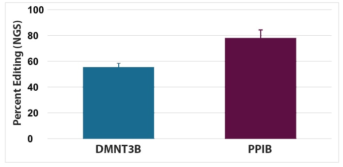 Percent editing of PPIB and DNMT3B genes in T cells