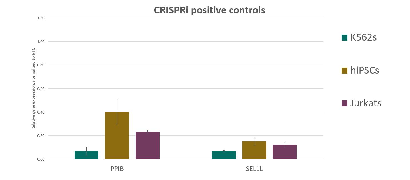 Robust gene knockdown with CRISPRi synthetic sgRNA positive controls